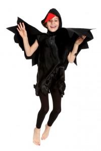 schwarzer Kittel mit Flügeln und Haube